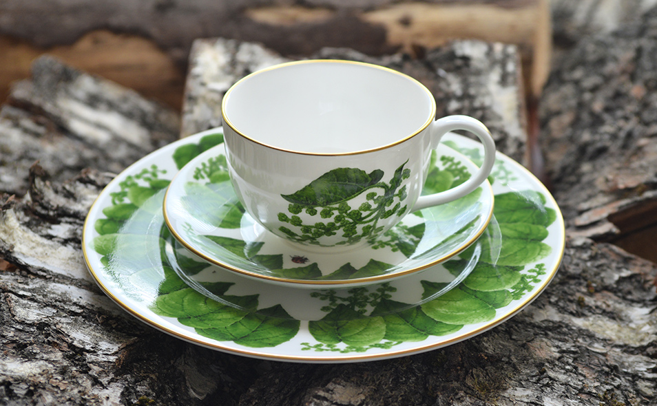 Royal Buckingham ADONIA Bone China